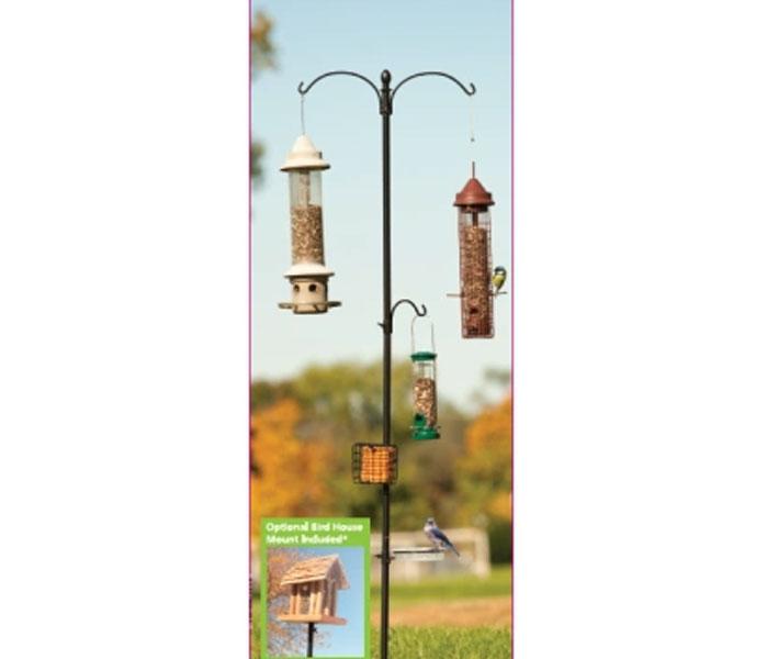 Basic Bird Feeding Station