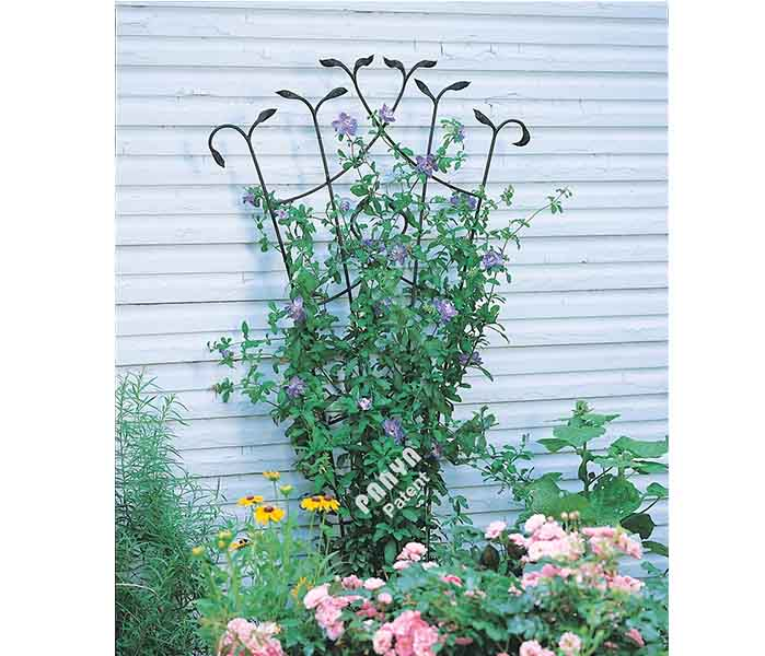 Forged Fan Trellis with Leaves