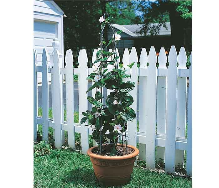Garden Obelisk Pot Obelisk Plant support
